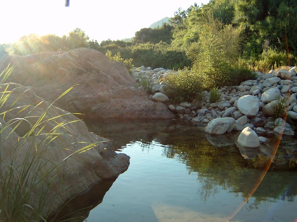Un rivière de Corse