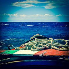 un timone per l'italia [24-25/02/2013]