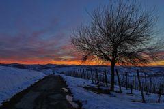 un tramonto monferrino