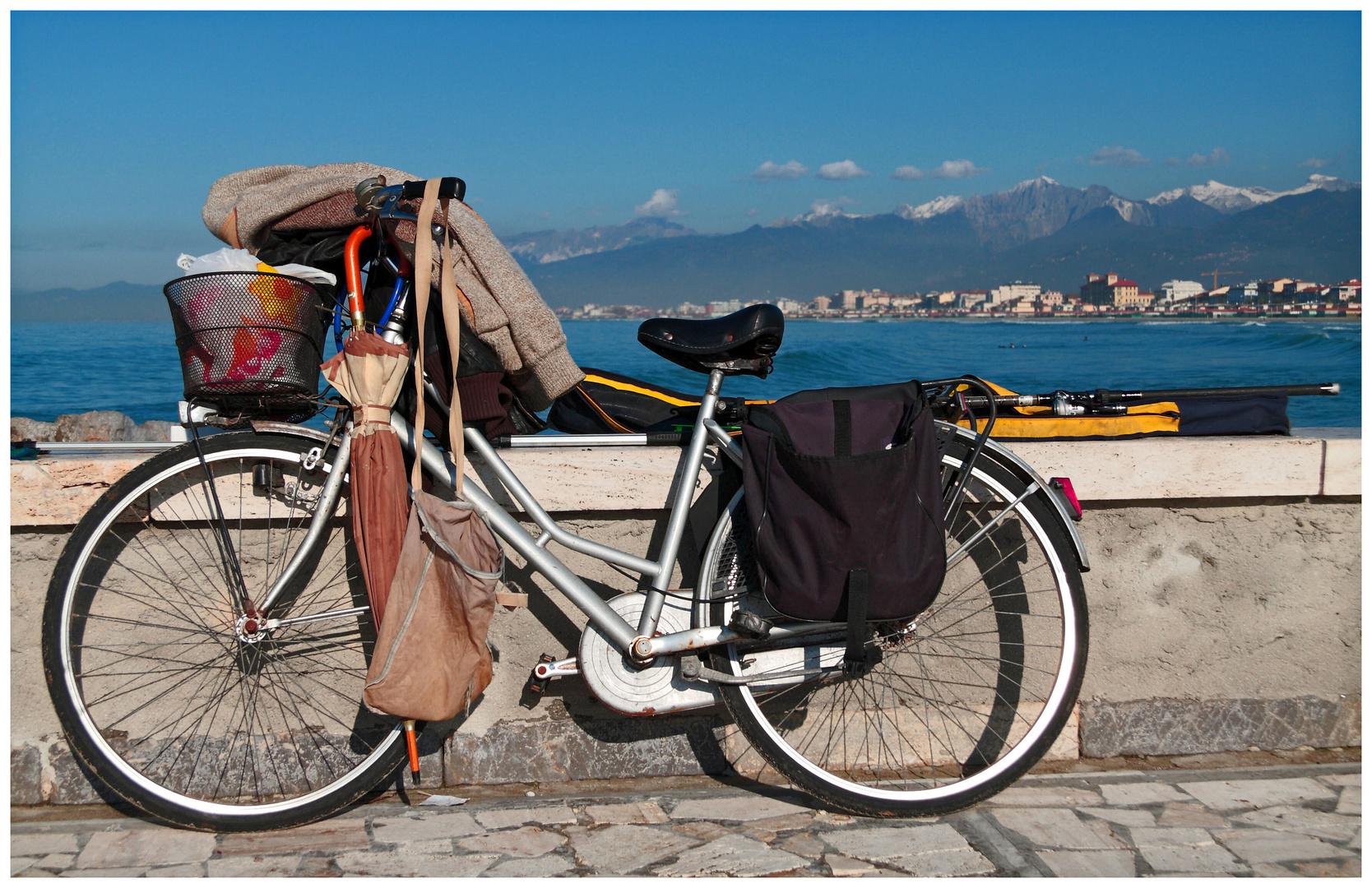 Una bici, e tanto altro .......