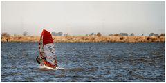 Una giornata di Surf.