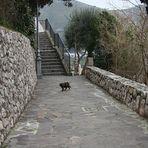 Una passeggiata a Sperlonga....