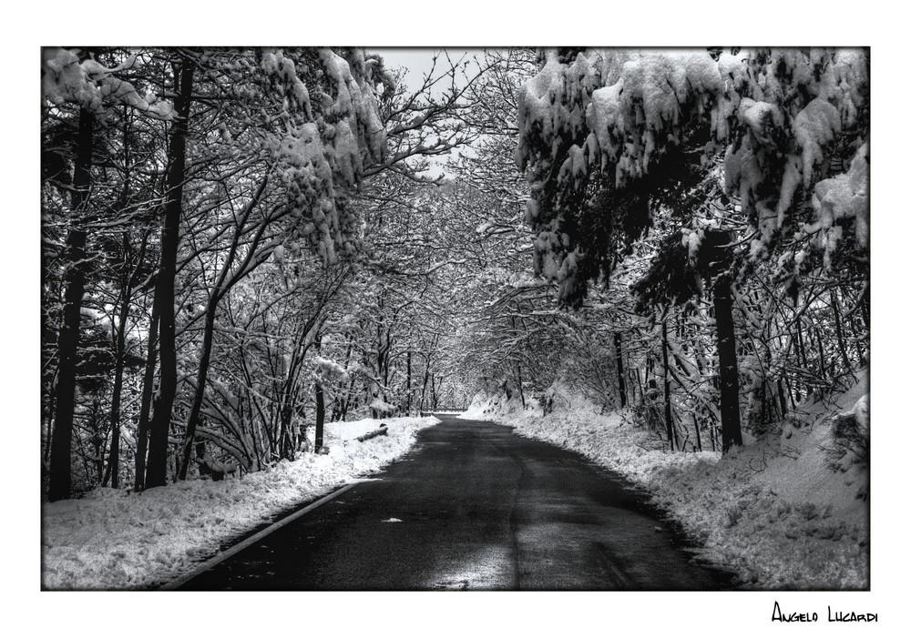 Una strada da ...brivido