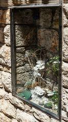 Una vidriera para la orquidea