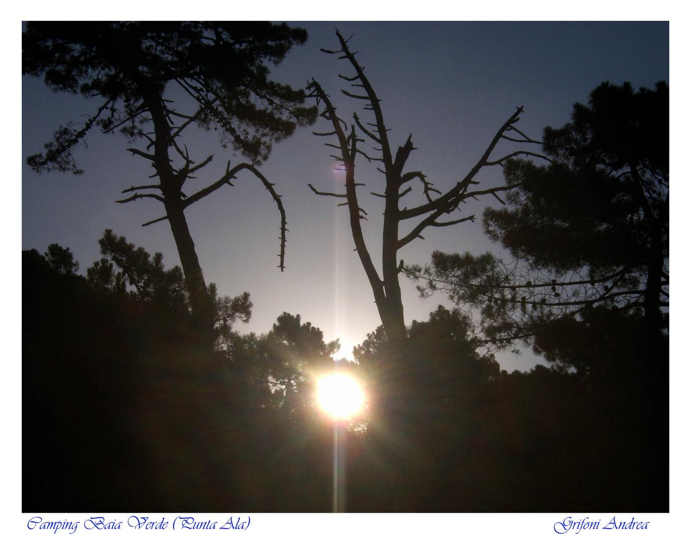 Un'alba come tante