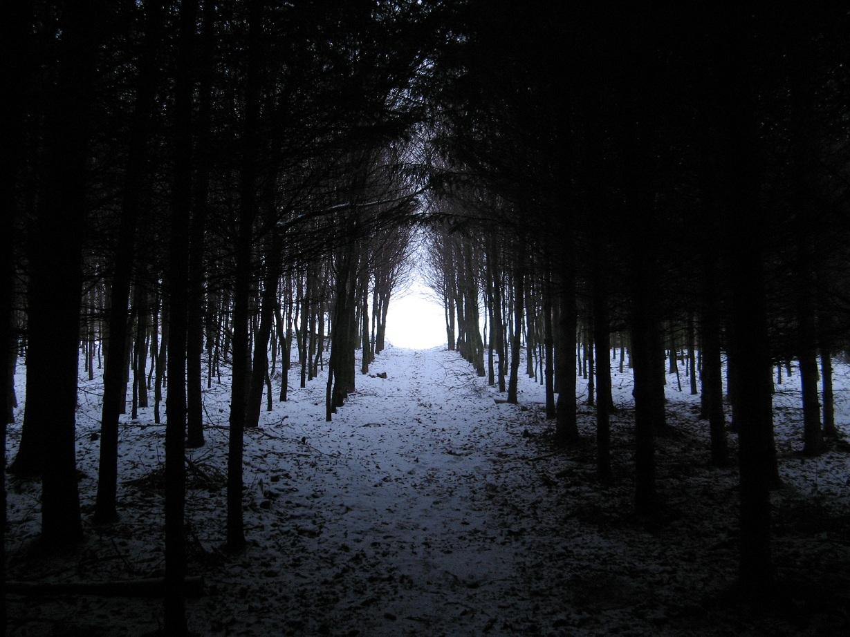 Und am Ende kommt das Licht