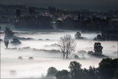 ..... und aus den Wiesen steiget der weiße Nebel wunderbar