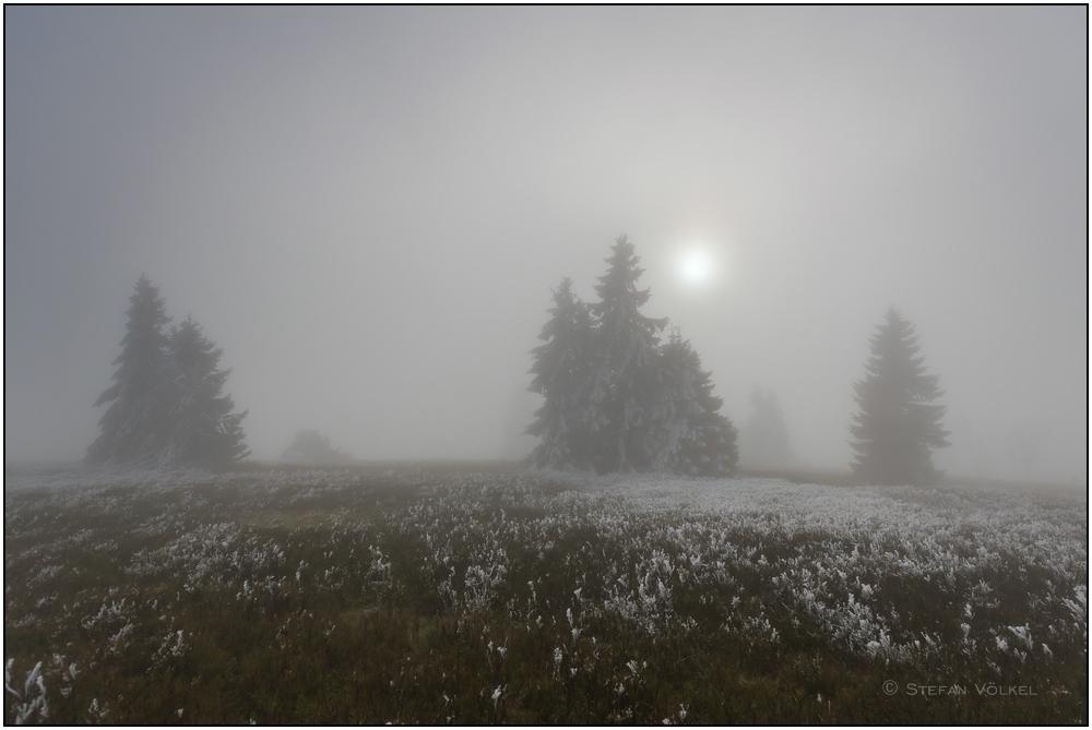 Und dann kam wieder der Nebel...