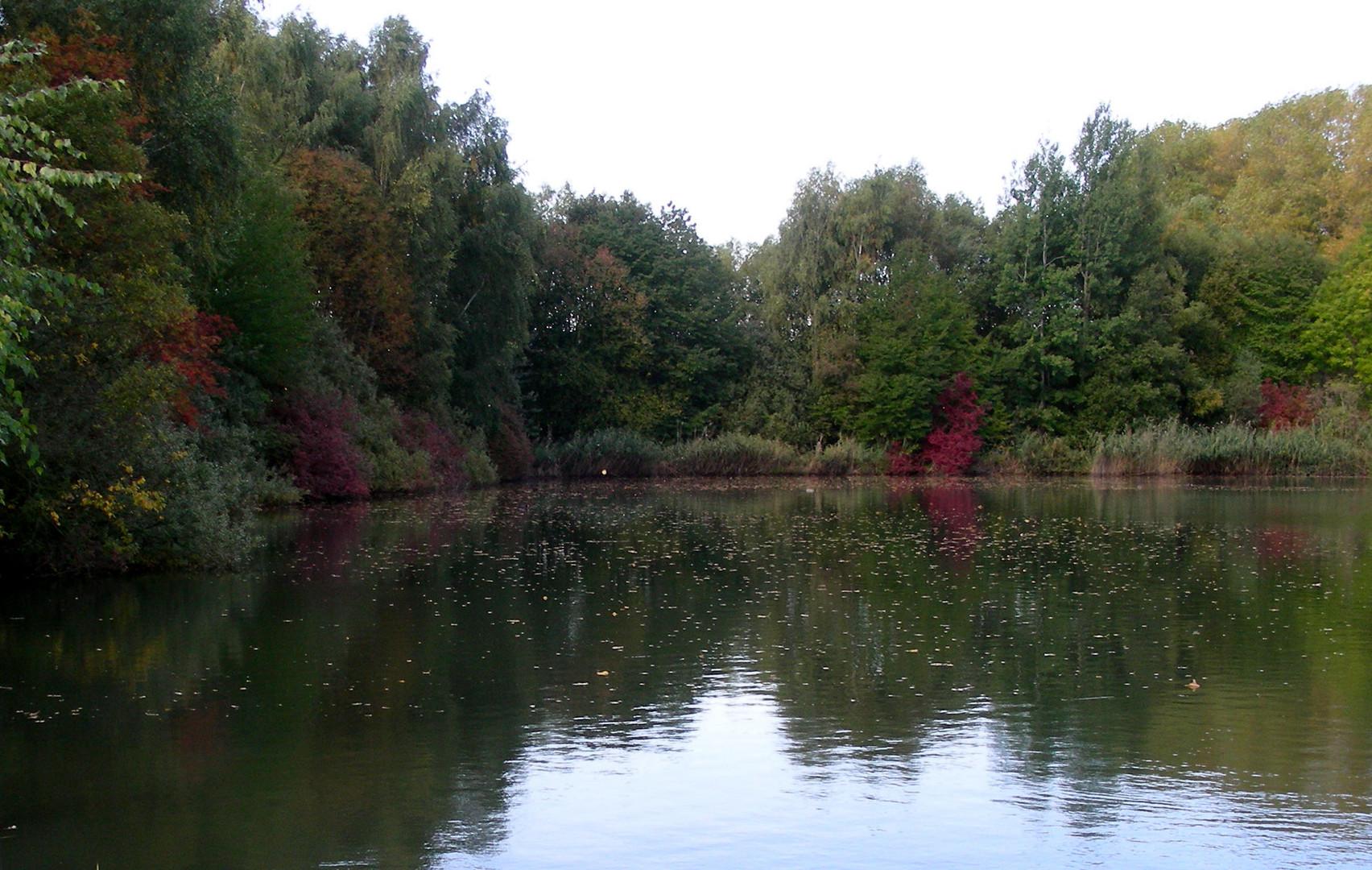 ...und der Herbst beginnt