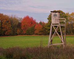 ... und der Herbst-Maler hat wieder alle Pigmente zusammen getan !