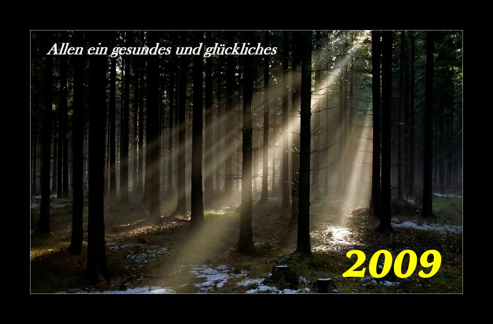 """... und immer """"Gut Licht"""""""