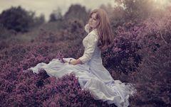 ... und immer wieder lila ...!
