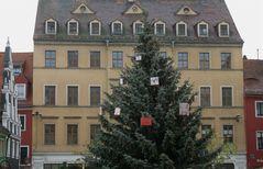 °°° Und in Meissen erst - da wachsen schon die ersten Weihnachtsgeschenke an den Tannen °°°