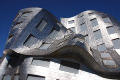 ... und noch ein Gehry!