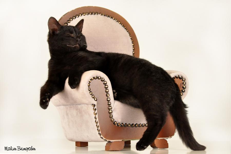 und noch ein Sessel