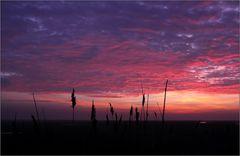 Und noch ein Sonnenuntergangsfoto ...
