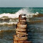 Und nochmal... die Ostsee