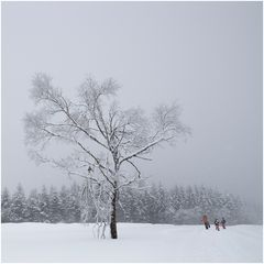 ...und schneit und schneit und schneit...