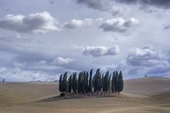 Under Tuscan skies...