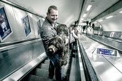 Underground Dog
