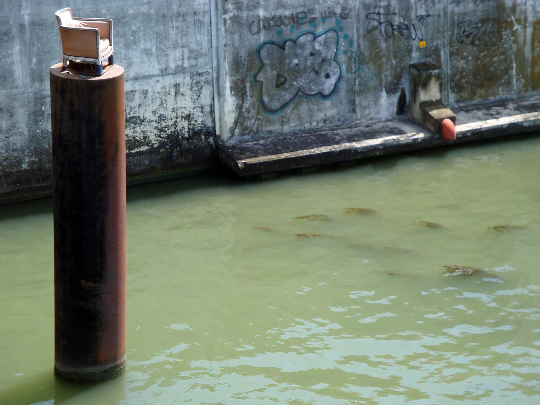 une installation sur la seine , sur les rives du théatre ou je travaille