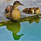 une mère fière et heureuse ....