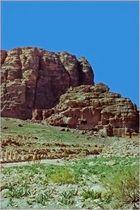 Une vue de Petra au printemps