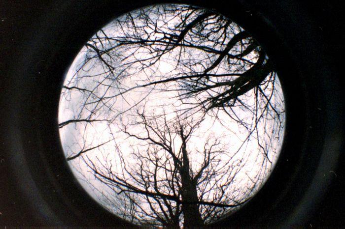 unechter Mond