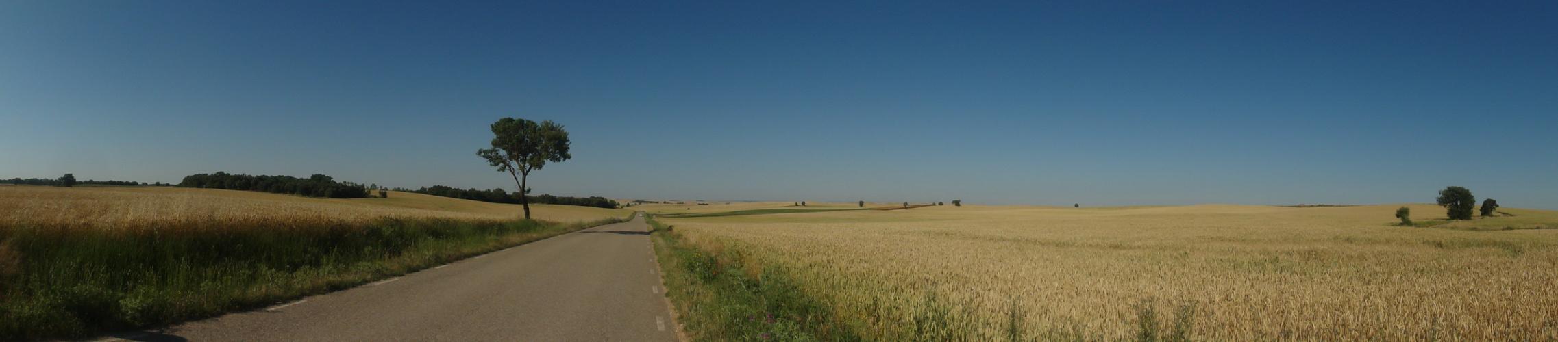 Unendliche Straßen in Kastilien bei Burgos