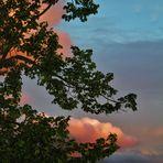 unerwartet zur blauen Stunde die Wolken Rosa