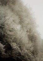 Unerwartete Schneemassen oder der Wasserfall aus Schnee Eis und Nebel