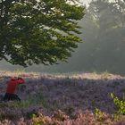 Unfassbar !!!!.........Sein Durchblick mag schön sein, aber das Betreten der Mehlinger Heide...