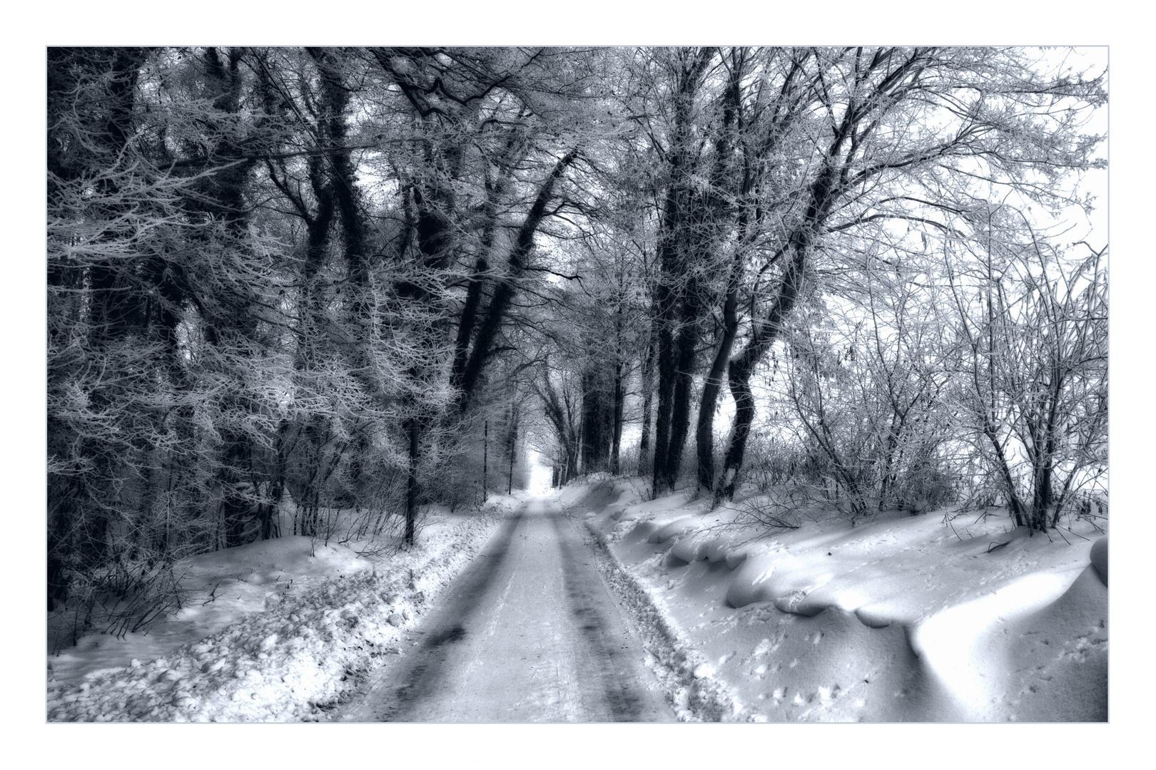 Unheimlicher Winter 2011