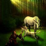 Unicorns and Princesses