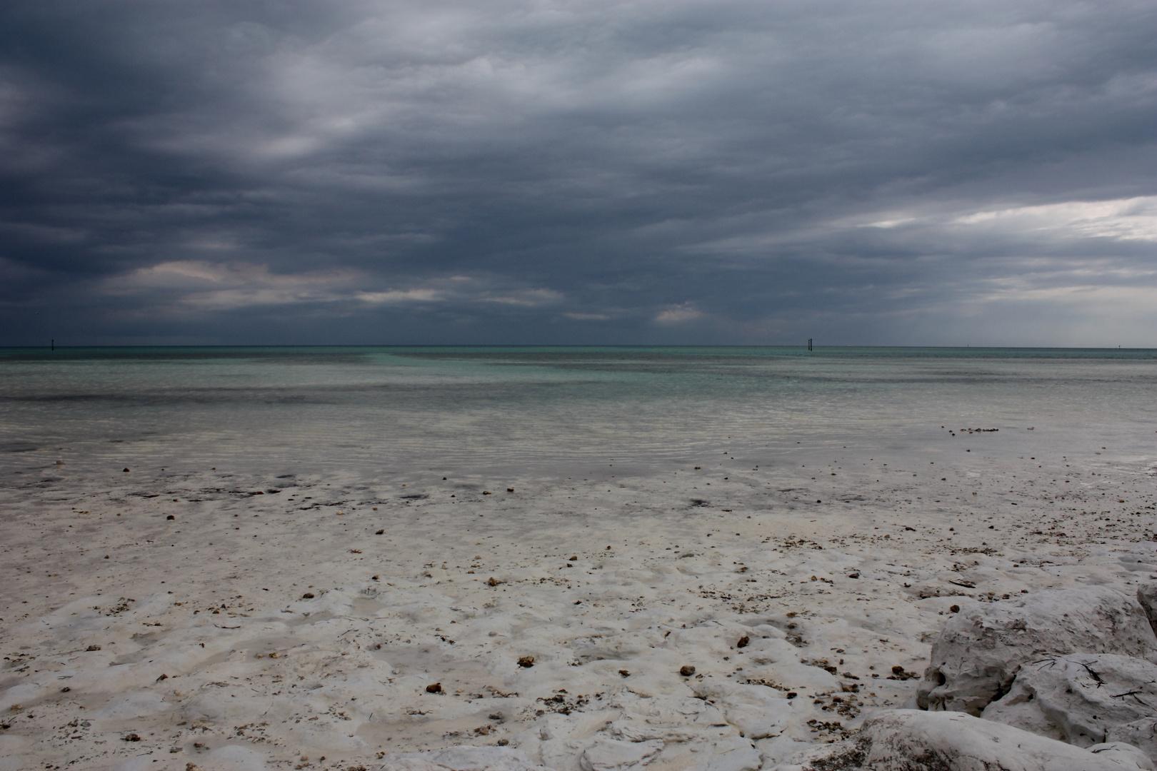 Unique Beach Moment