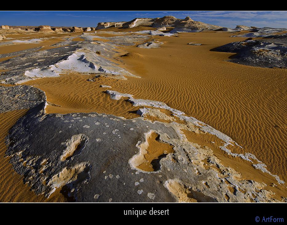 unique desert