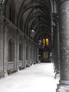 Universität Wien draußen