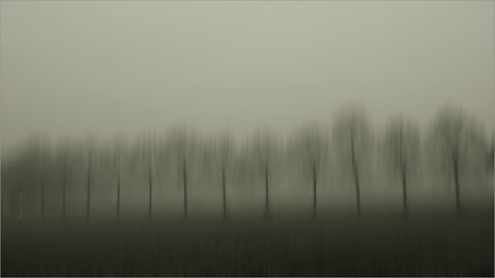 Uno sguardo nel nulla