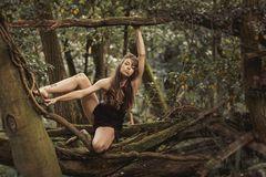Unordnung im Wald
