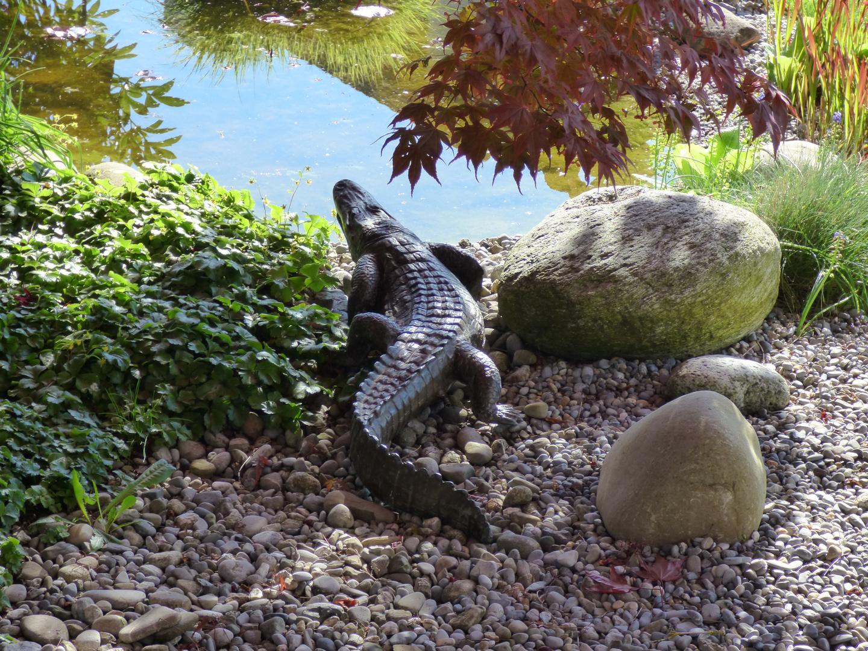 Unser Alligator