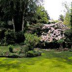 Unser Garten - Panorama -