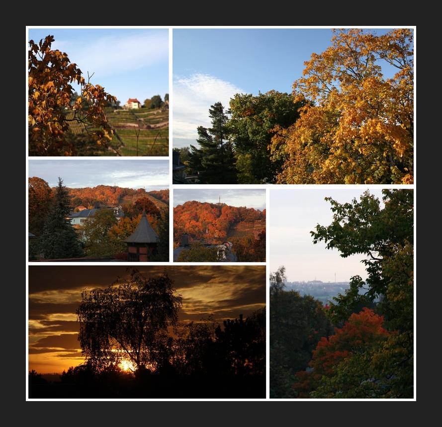 ...unser Herbst