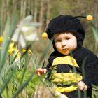 Unser kleines Bienchen Willy