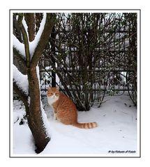 """Unser Nachbar Jerry auf """"Schneestreife"""""""