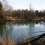 Unser Naturschutzgebiet