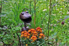 Unser neuer Gärtnergehilfe