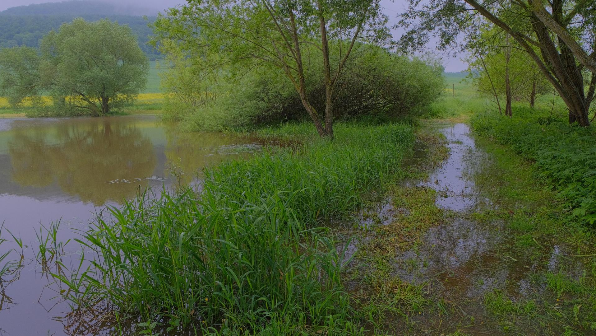 unser See läuft über ( nuestro lago se desborda)