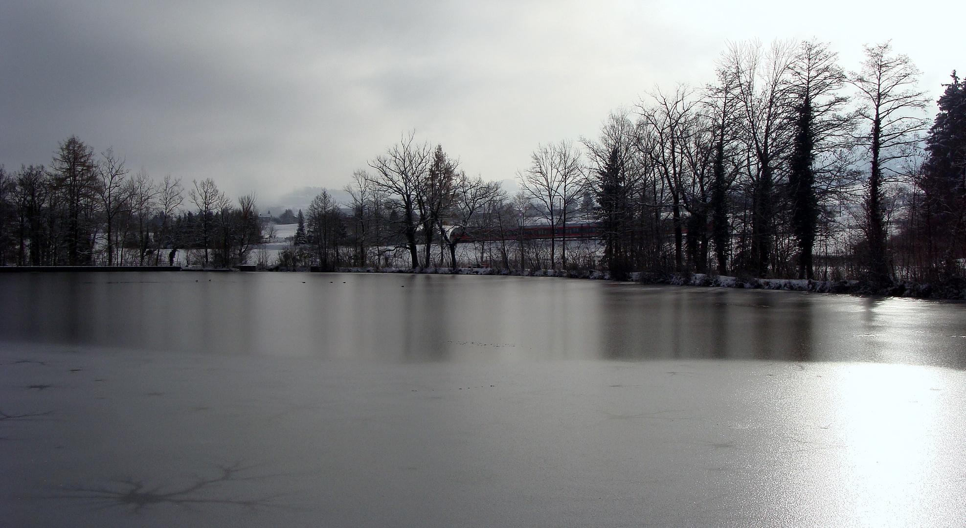 Unser Teich / Nuestro estanque / Notre étang...04