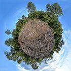 Unser Wald.....