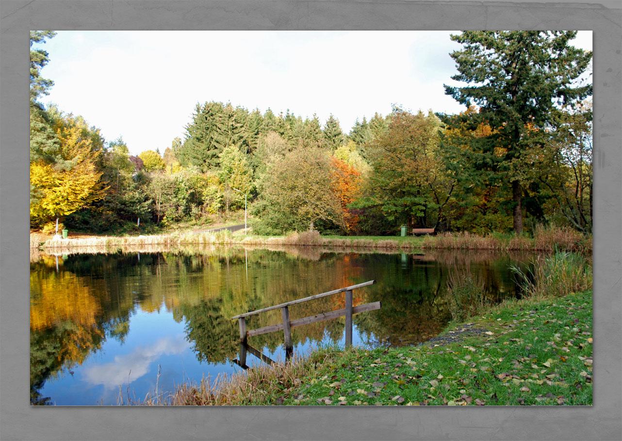 Unser Weiher im Herbst